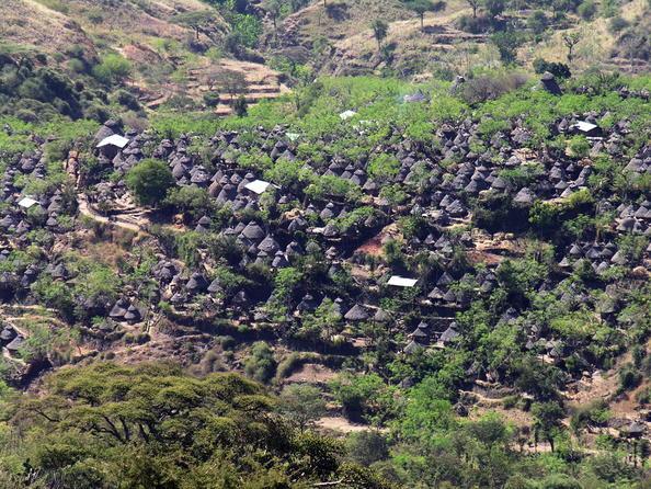 Paysage culturel du pays Konso