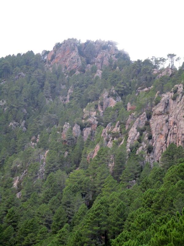 По этому отвесному и скалистому склону мы спустились.