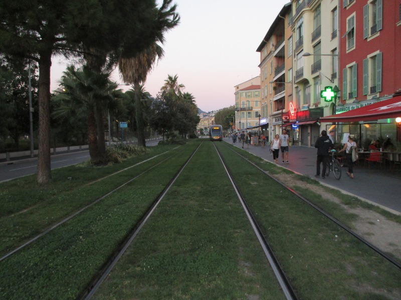 Трамвайные рельсы на траве.