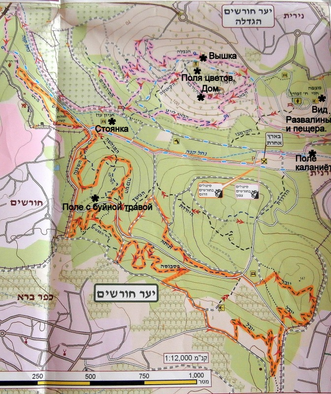 Карта леса Хорашим. Чёрными звёздочками обозначены места, которые я посетила.